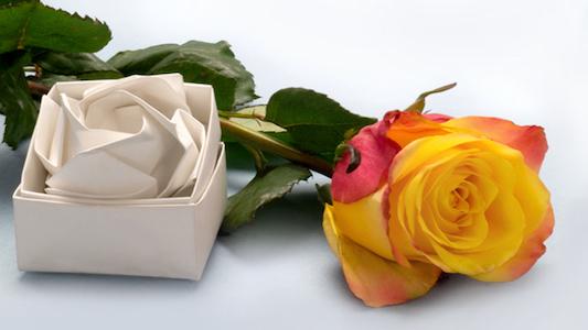La douceur du papier minéral rappelle le velour ou même les pétales de rose